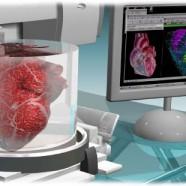 Drukowane serce – w przyszłości może to rozwiązać problem braku organów do przeszczepu.